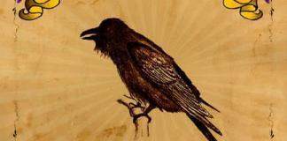 One Crow Murder