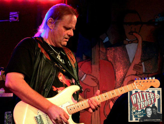 Walter Trout FEATURED