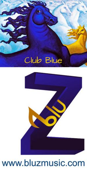 Club Blue 300×600