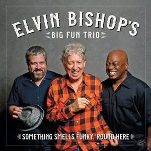 Big Fun Trio Something Smells Funky'Round Here Cover