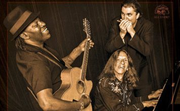 Journeys to the Heart of the Blues=feat
