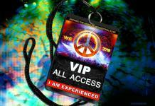 Woodstock Experience 2019 Feature