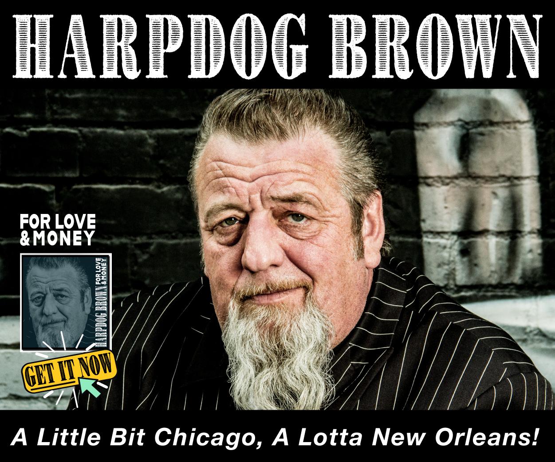2018 Harpdog Brown B 250×300